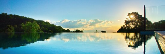 O'Reilly's Rainforest Retreat, Mountain Villas and Lost World Spa : Infinity Pool