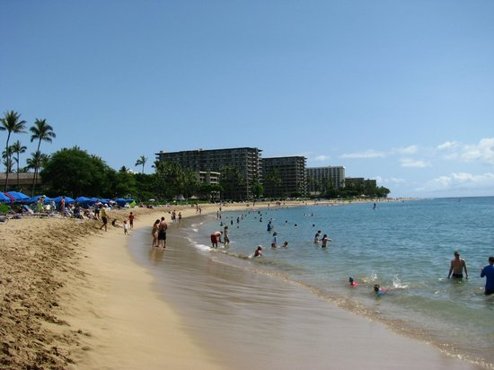 Sheraton Maui Resort & Spa: Ka'anapali Beach
