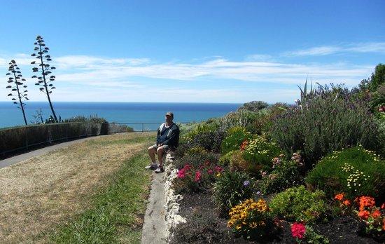 Bluff Hill Lookout : Garden area