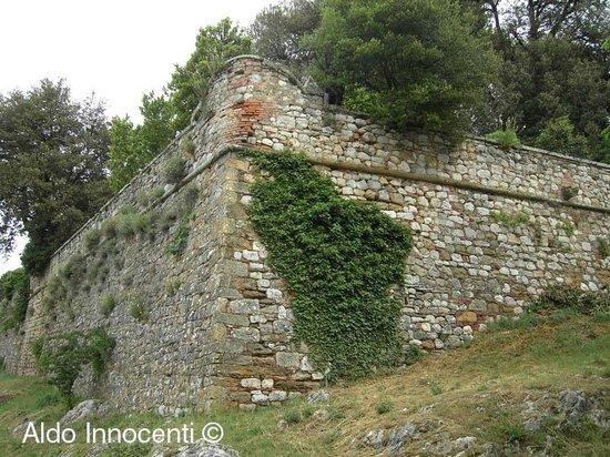 Montefollonico Centro Sorico: Un bastione delle mura