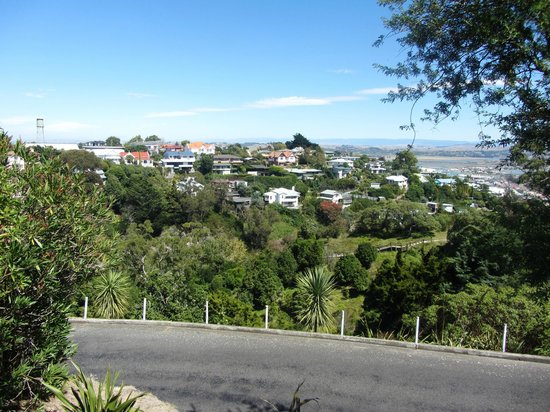 Bluff Hill Lookout: Western View