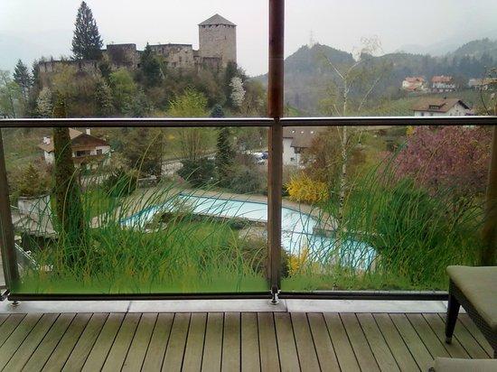 Hotel Der Waldhof: panorama dalla camera