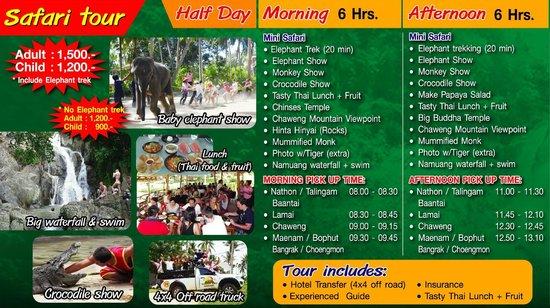 Funny Day Safari - Bophut Elephant Camp : Elephant Trekking program of Funny Day Safari Koh Samui