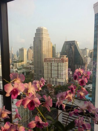 Rembrandt Hotel Bangkok: View from hotelroom