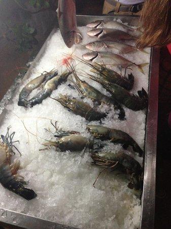 Kingfisher: Выбор рыбы на ужин)