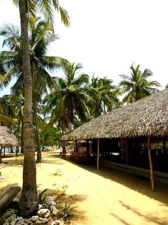 Kitesurfing Lanka: Camp