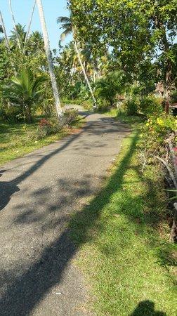Abad Turtle Beach : Walk way to beach area