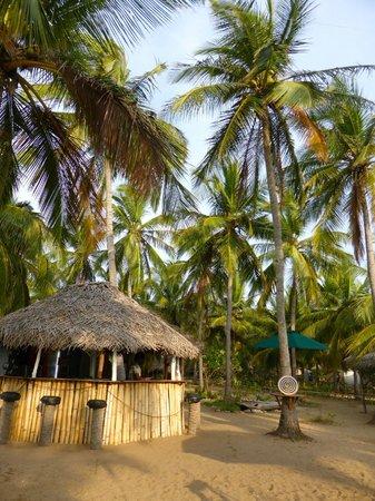 Kitesurfing Lanka: Bar