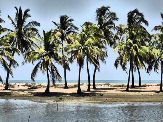 Kitesurfing Lanka: Ausblick von der Lagune Richtung Meer