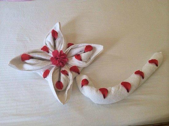 Nubian Island Hotel: крутили цветок