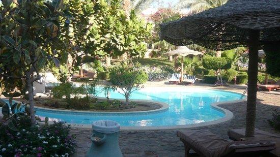Blue Lagoon Marsa Alam : piscine