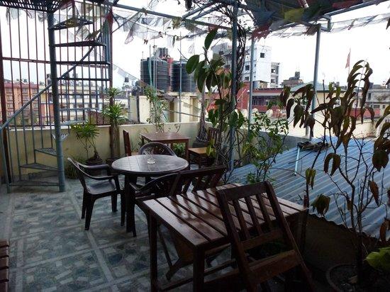 Festoon Hotel: rooftop for breakfast