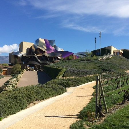 Hotel Marques de Riscal a Luxury Collection Hotel: Desde los jardines
