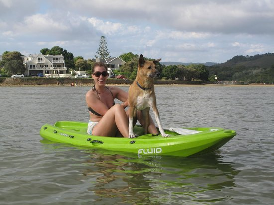 TwoAngels Guest House: Free Kayaks and dogfriendly