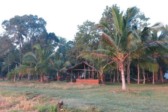Paradise Inn: Garden