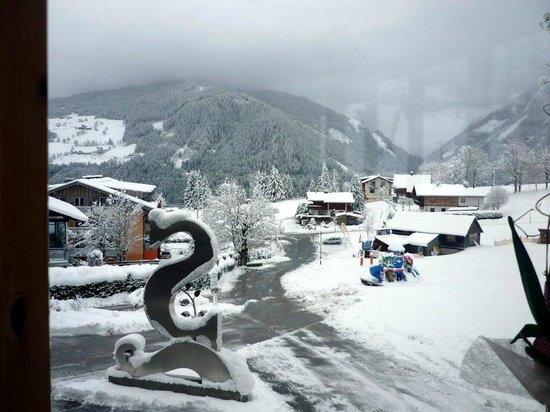 Hotel Schwaigerhof: Blick aus dem Wintergarten