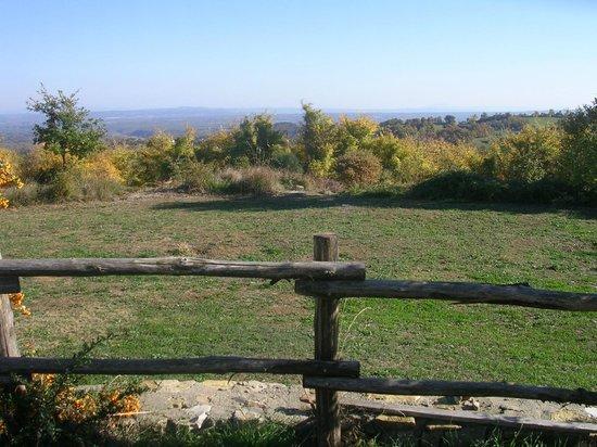 La Contea Degli Angeli: Panorama