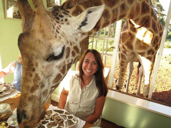 Giraffe Manor : Breakfast guest.