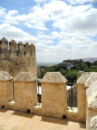 Alcázar de la Puerta de Sevilla: Стены Альказара