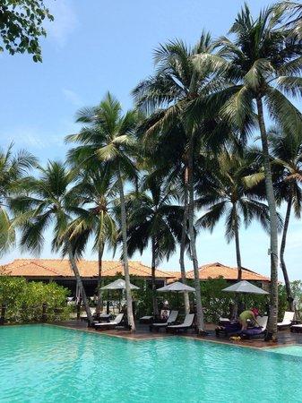 Avillion Port Dickson: 24hr pool