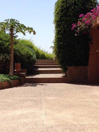 Riad Dar Maktoub : Jardin