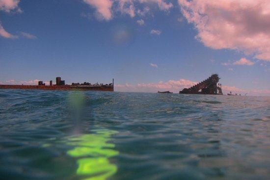 Adventure Moreton Island: Snorkeling around the wrecks