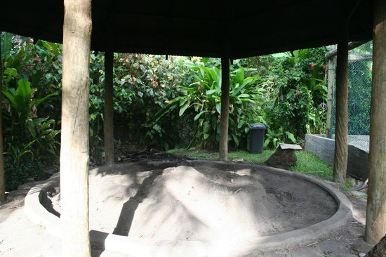 Tokoriki Island Resort: Lovo site