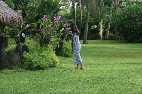 Tokoriki Island Resort: Nature in front of Asian Cuisine
