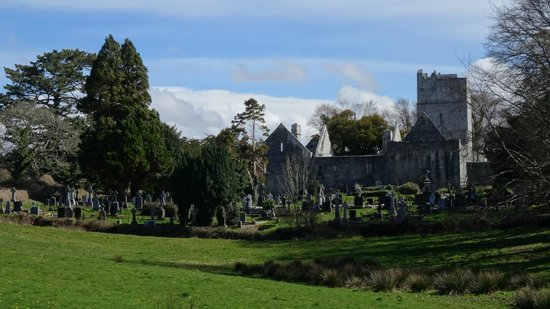 Muckross Abbey: Вид с дороги
