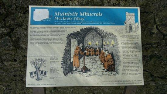 Muckross Abbey: На входе