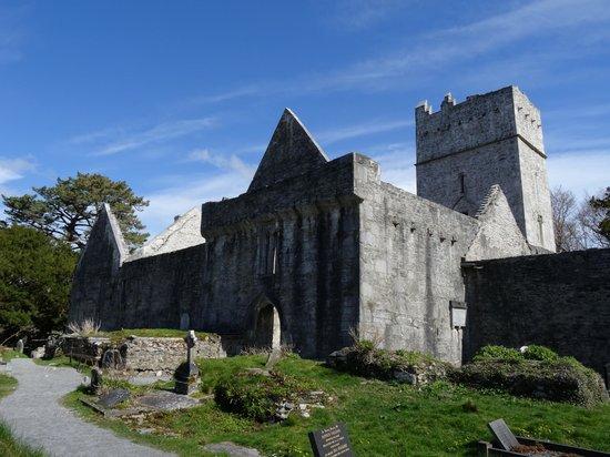 Muckross Abbey: Внутри
