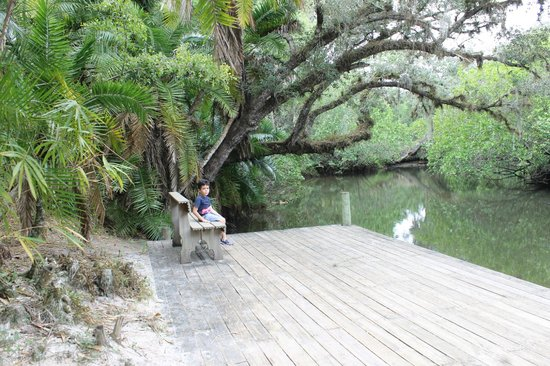 Koreshan State Historic Site: observation deck on the river