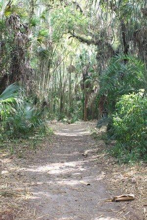 Koreshan State Historic Site: trails