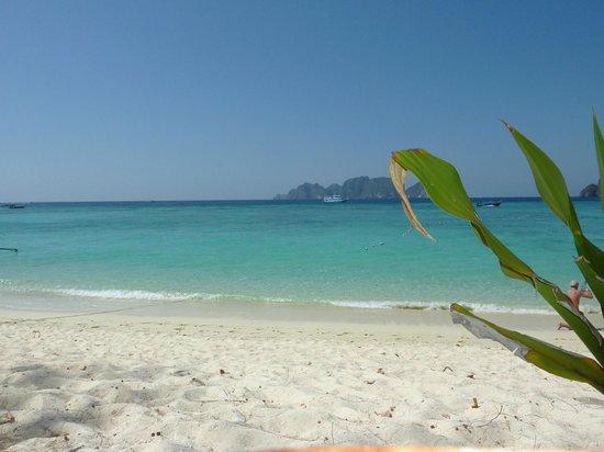 Phi Phi Paradise Pearl Resort: .