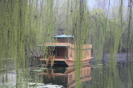 Centaur Lake View Hotel : House boat at the hotel