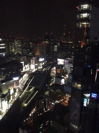 Park Hotel Tokyo: view from my room on the 29th floor.