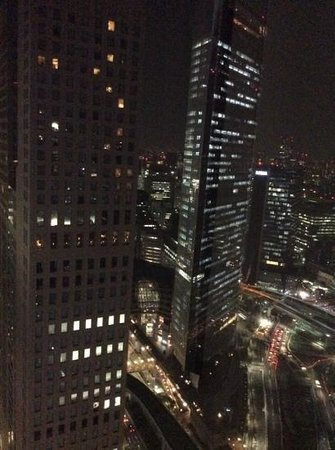 Park Hotel Tokyo: From the 29 th floor