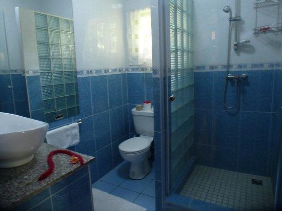 Buisson Guesthouse La Digue : ванная