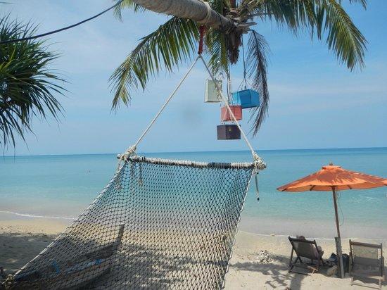 Coco Lanta Resort: Hammock