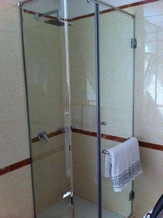 Hotel Brilant Antik: Modern shower