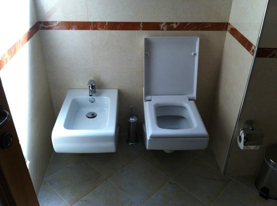 Hotel Brilant Antik : Spotlessly clean bidet and toilet