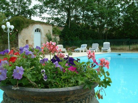 La Roseraie: Beautiful, heated, large swimming pool
