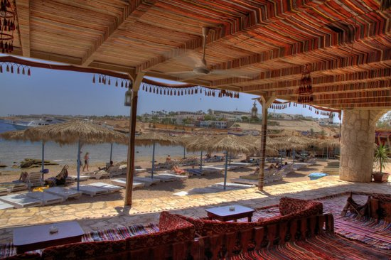 Sharks Bay Umbi Diving Village: Bedouin tent on the beach