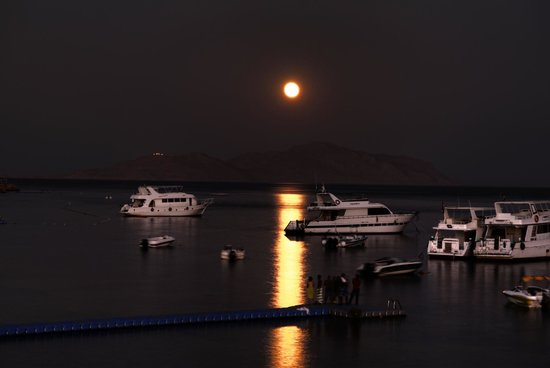 Sharks Bay Umbi Diving Village : Full moon