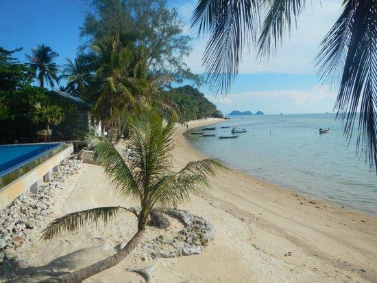 Sunset Cove Resort : Beach