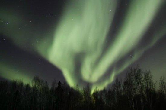 Alaska Grizzly Lodge B&B : 2014/03/20 Aurora 1