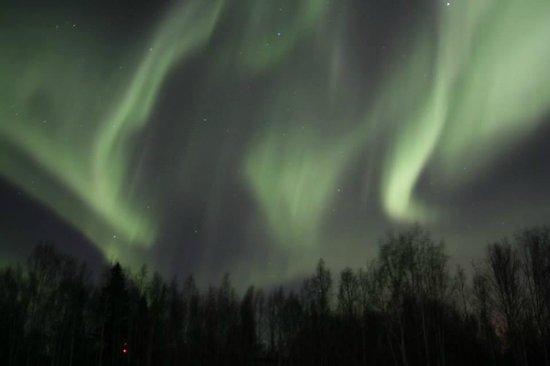 Alaska Grizzly Lodge B&B : 2014/03/20 Aurora 2