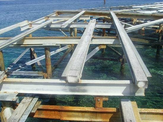 Building materials picture of jaz mirabel beach nabq for Beach house construction materials