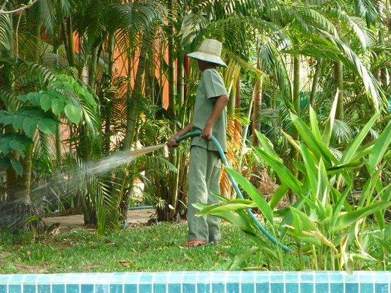 Angkor Village Resort: NATURE ET CULTURE