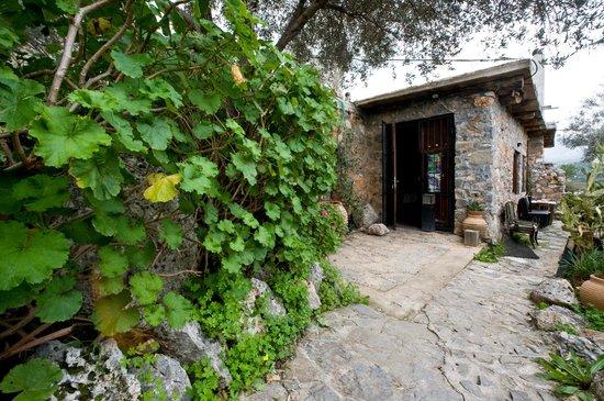 Ksipetra: η είσοδός του